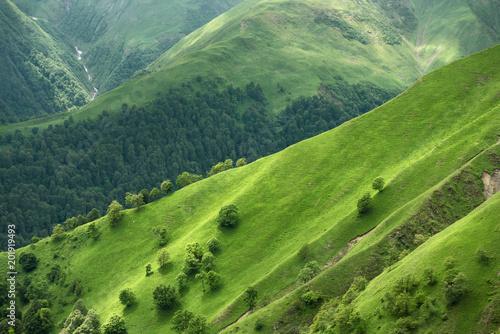 Fototapeta Mountain pass in Georgia in summer. Abano pass in the Caucasus mountains. obraz na płótnie