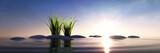 Fototapeta Kamienie - Steine mit Gras im Meer bei Sonnenuntergang