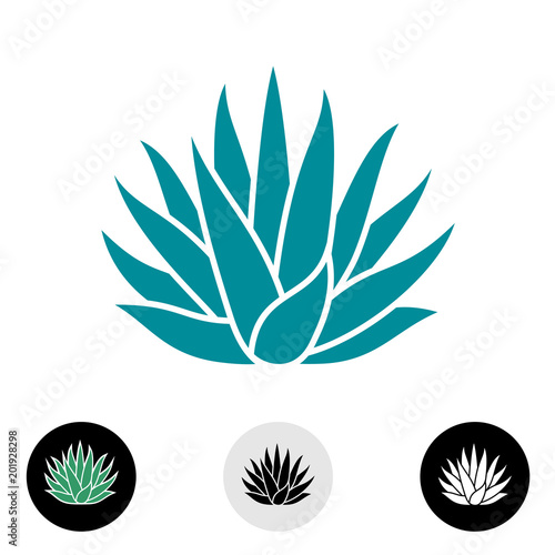 Blue agave plant vector silhouette. Canvas Print