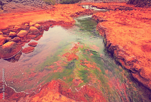 Photo sur Aluminium Corail Salto del Agrio and Agrio river
