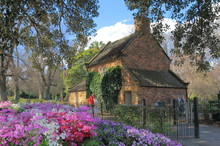 Fitzroy Garden And Historical ...