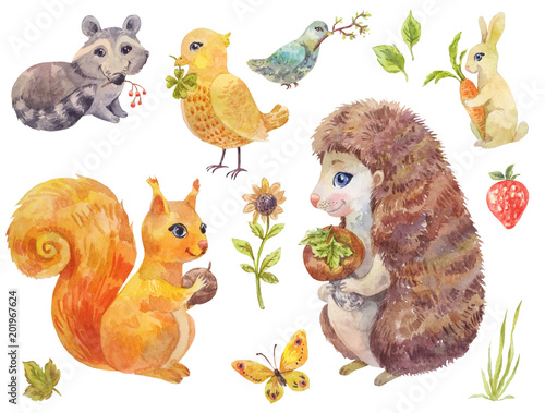 Cute watercolor forest animals. Vintage illustration of