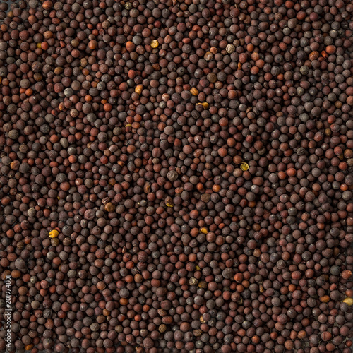 Background texture of a pile of black mustard seeds.