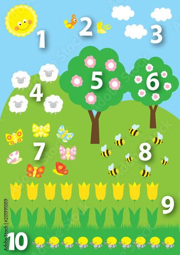 Photo Stands Birds, bees ilustracja edukacyjna dla dzieci: liczby 1-10