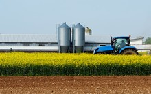 Blue Tractor In The Middle Of A Yellow Canola Field, With An Agricultural Building And Two Metal Silos On Behind.