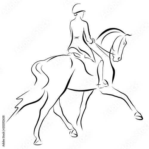 A sketch of a dressage rider on a horse executing the half pass. Poster Mural XXL