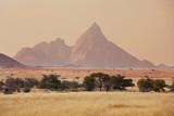 Fototapeta Sawanna - Namib landscapes