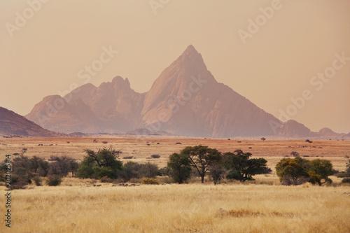Namib landscapes