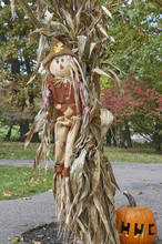 Straw Man And Corn Stalks Welcoming Guests To Community Pumpkin Festival And Halloween Event