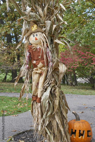 Obraz na plátne Straw Man and corn stalks welcoming guests to community pumpkin festival and hal