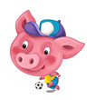 cartoon scene with happy funny and young pig playing football - on white background - illustration for children