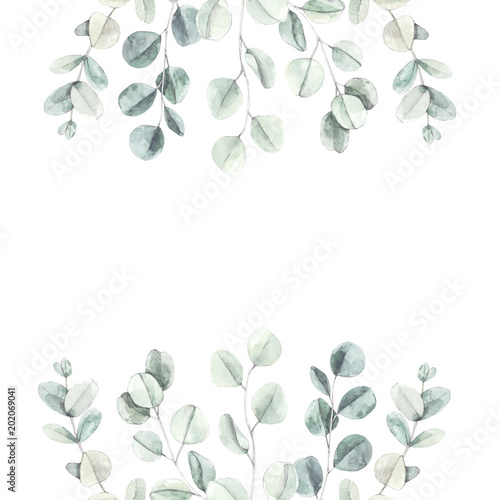 Watercolor Illustration Botanical Frame With Eucalyptus Leaves