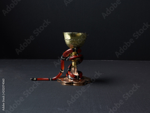 Fotografie, Obraz  Red snake wrapped around gold chalice