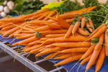 Fresh Carrots Are Laid Out On ...