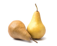 Bosc Pears Isolated On A White...