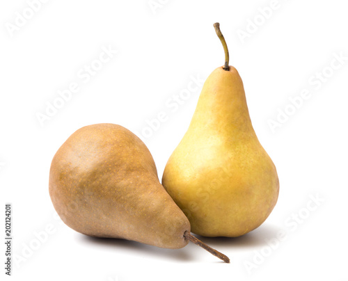 Bosc Pears Isolated on a White Background