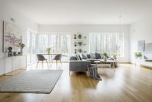 White Elegant Living Room Inte...