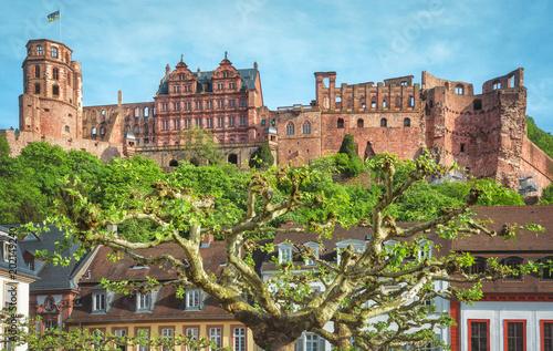 Fotografie, Obraz  Heidelberger Schloss