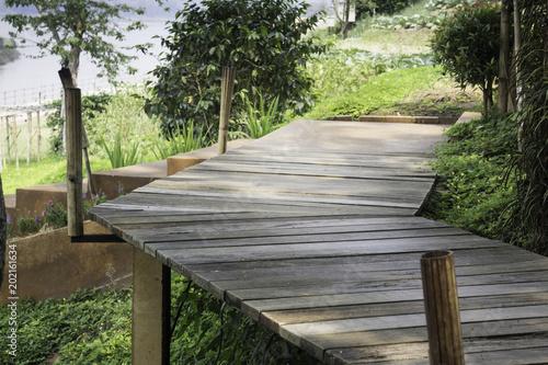 Poster Jardin Wooden walkway with tropical garden