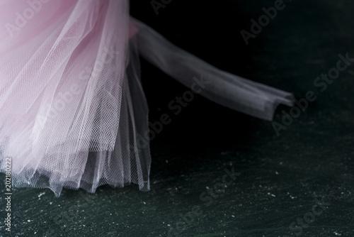 Fotografie, Obraz  pastel pink tutu