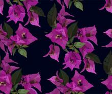 Pink Bougainvillea Seamless Pa...