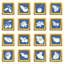 Berries Icons Set Vector Blue ...