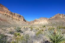 Santa Elena Canyon And Rio Gra...