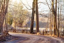 Rural Road Winding Through Tal...
