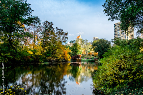 Photo Stands United States Central Park View