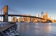 Cold New York