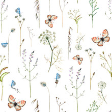 Seamless Watercolor Pattern With Wildflowers And Butterflies On A White Background.