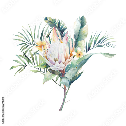 Foto  Watercolor exotic plants bouquet
