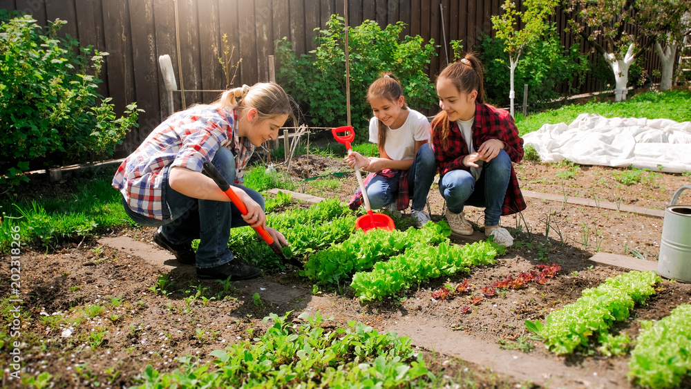Fototapeta Happy young woman with daughters planting seeds in garden
