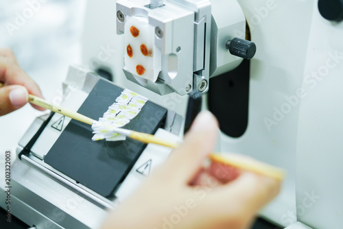 Fotografia, Obraz  Rotary Microtome Section for diagnosis in pathology make microscope slide histology