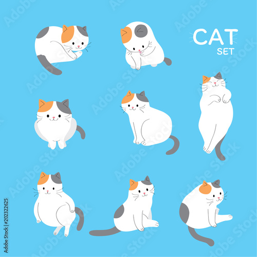Cartoon cute actions adorable cat vector. Wall mural