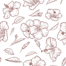 Vector Hand Drawn Hibiscus Sea...