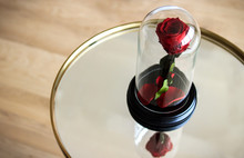 Red Rose In A Flask Under The ...