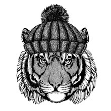 Wild Tiger Cool Animal Wearing Knitted Winter Hat. Warm Headdress Beanie Christmas Cap For Tattoo, T-shirt, Emblem, Badge, Logo, Patch