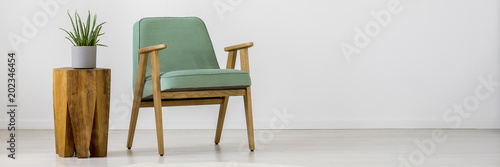 Fotografia, Obraz Mint armchair and plant