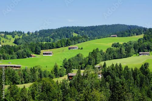 Poster Lime groen grüne Berglandschaft nördlich von Hittisau in Österreich mit Blick Richtung Oberstaufen