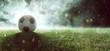Leinwandbild Motiv Fußball liegt auf Stadionrasen im Rauch