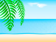 Sea beach in summer. Branch of a palm tree. Vector illustration
