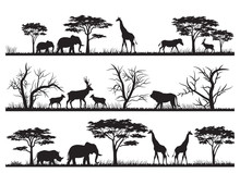 Animals Forest Silhouette At S...