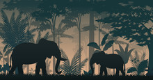 Animals Silhouette At The Insi...