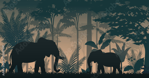 Animals silhouette at the inside forest Fototapet