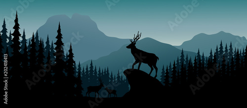 Silhouette deer in hill at night Wallpaper Mural