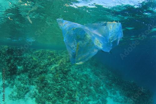 Staande foto Dolfijnen Plastic bag pollutes ocean coral reef