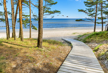Coastal Landscape With Pine Trees, Sand Dunes And Footpath To The Sandy Beach, Baltic Seat. In The Baltic Countries Tourism Is Mostly Targeted At A Human Health Maintenance .