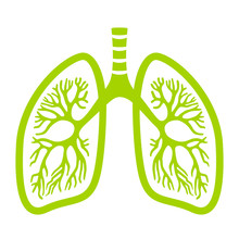 Green Lungs Vector Icon