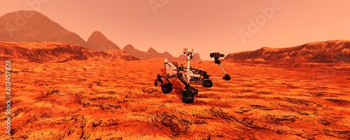 Fotomural 3D Rendering Mars Rover